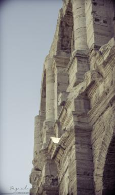 <b style='font-size:16px' > </b><span style='font-style:italic'> ( Outdoor  : Voyage en Arles :  <i class='fa fa-copyright' aria-hidden='true'></i> Pascal Soumoulou  )</span>